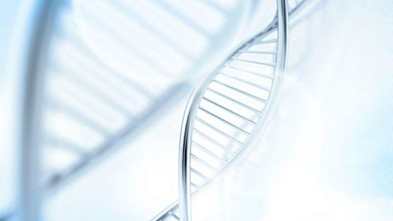 Fóbie môžu byť odovzdávané v génoch